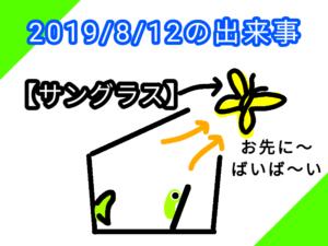 アゲハチョウ028