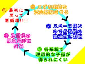 悪循環のイメージ図