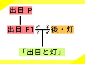 4つ目の系図