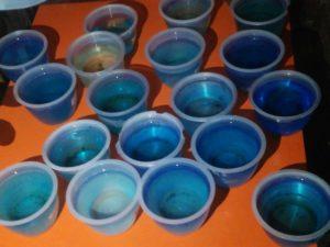 メダカの卵の管理容器が複数(プリンカップ)