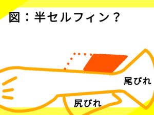 光体型メダカの「半セルフィン」?