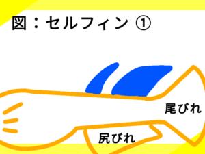 光体型メダカのセルフィン ①