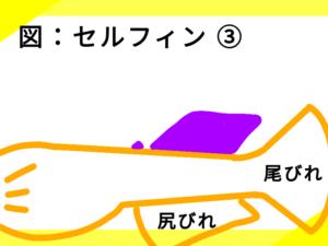 光体型メダカのセルフィン ③