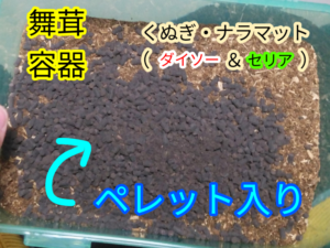 椎茸の飼育容器(カブトムシの幼虫)