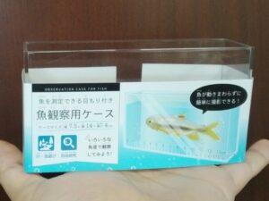 エルオーの魚観察用ケース ①