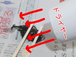 ダイソーの昆虫標本キットの工程 ③