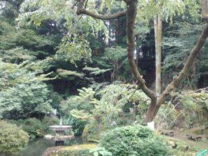 萩原諏訪城の敷地