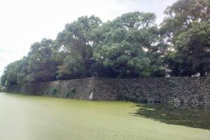 皇居のお堀